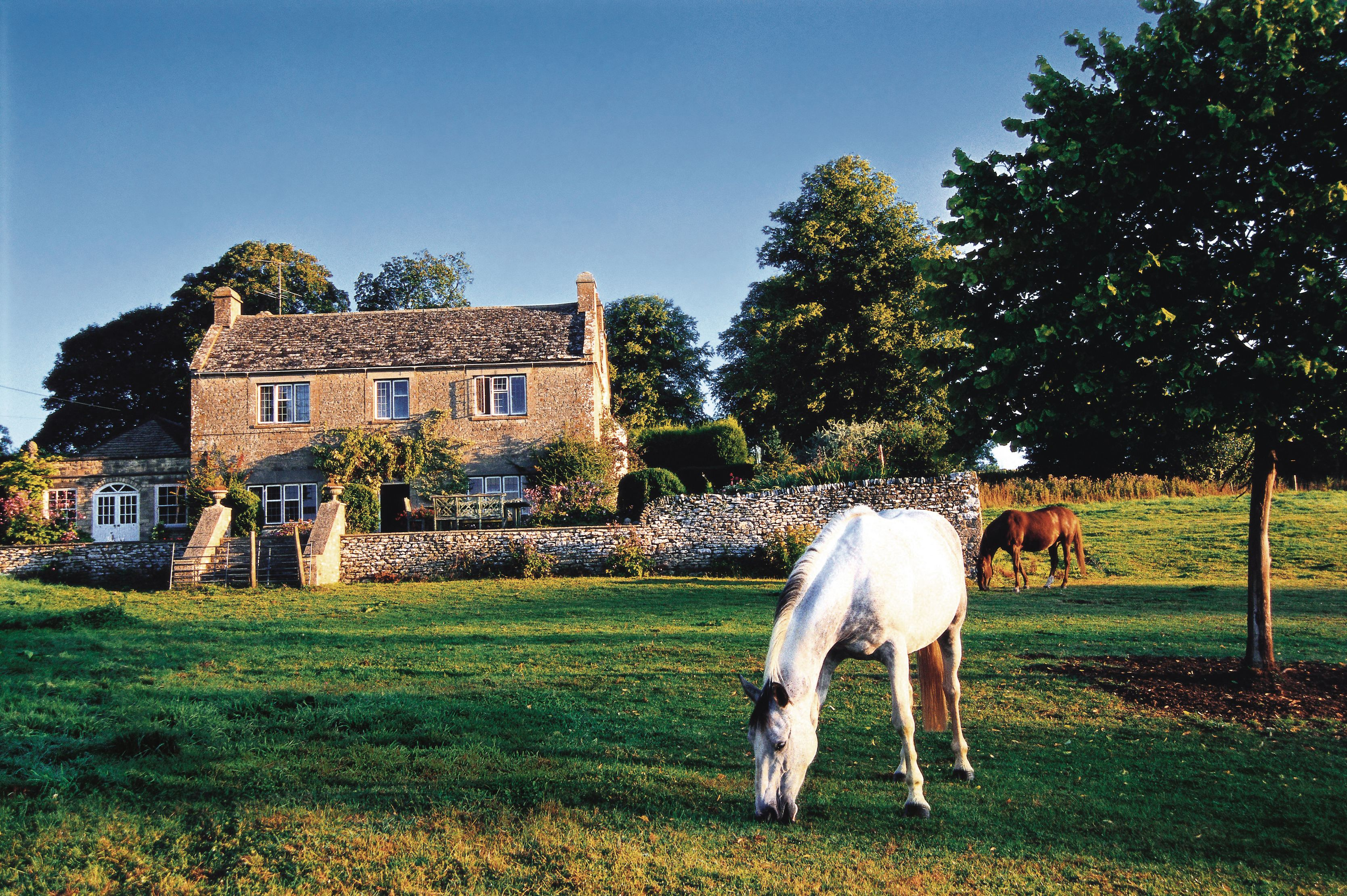 Equestrian Property Insurance image