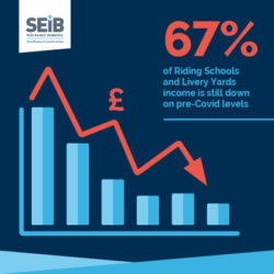 Graph showing decline in livery yard income